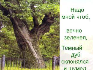 Надо мной чтоб, вечно зеленея,Темный дуб склонялся и шумел.