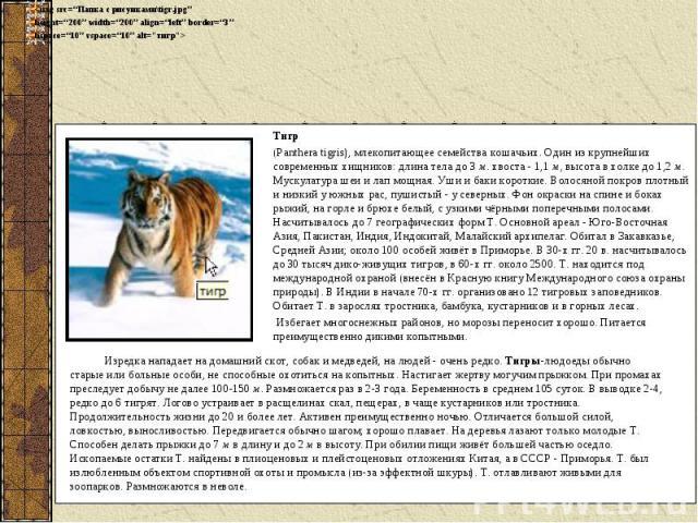 Тигр(Panthera tigris), млекопитающее семейства кошачьих. Один из крупнейших современных хищников: длина тела до 3 м. хвоста - 1,1 м, высота в холке до 1,2 м. Мускулатура шеи и лап мощная. Уши и баки короткие. Волосяной покров плотный и низкий у южны…