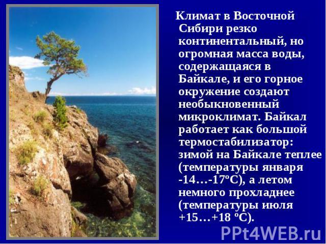 Климат в Восточной Сибири резко континентальный, но огромная масса воды, содержащаяся в Байкале, и его горное окружение создают необыкновенный микроклимат. Байкал работает как большой термостабилизатор: зимой на Байкале теплее (температуры января -1…