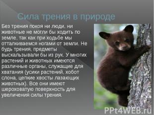 Сила трения в природеБез трения покоя ни люди, ни животные не могли бы ходить по