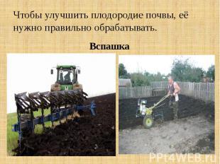 Чтобы улучшить плодородие почвы, её нужно правильно обрабатывать. Вспашка