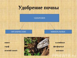 Удобрение почвы навоз калийныеторф фосфорныептичий помёт азотные
