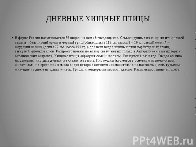 ДНЕВНЫЕ ХИЩНЫЕ ПТИЦЫВ фауне России насчитывается 55 видов, из них 48 гнездящихся. Самые крупные из хищных птиц нашей страны - белоплечий орлан и черный гриф(общая длина 115 см, масса 8 – 10 кг, самый мелкий – амурский кобчик (длина 27 см, масса 150 …