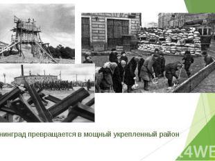 Ленинград превращается в мощный укрепленный район Ленинград превращается в мощны
