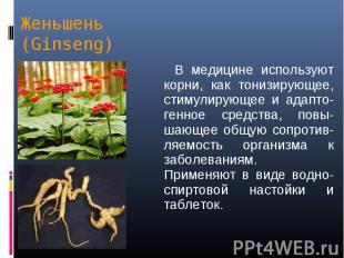 В медицине используют корни, как тонизирующее, стимулирующее и адапто-генное сре