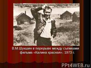 В.М.Шукшин в перерыве между съёмками фильма «Калина красная». 1973 г.