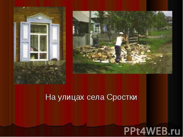 На улицах села Сростки