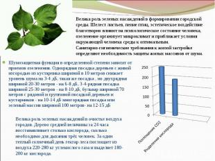 Шумозащитная функция в определенной степени зависит от приемов озеленения. Однор