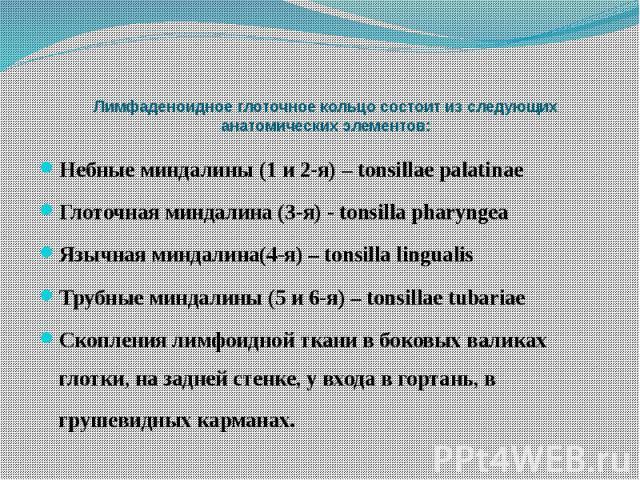 Лимфаденоидное глоточное кольцо состоит из следующих анатомических элементов: Небные миндалины (1 и 2-я) – tonsillae palatinae Глоточная миндалина (3-я) - tonsilla pharyngea Язычная миндалина(4-я) – tonsilla lingualis Трубные миндалины (5 и 6-я) – t…