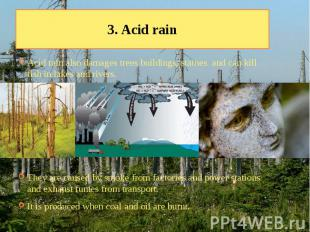 3. Acid rain Acid rain also damages trees buildings, statues and can kill fish i