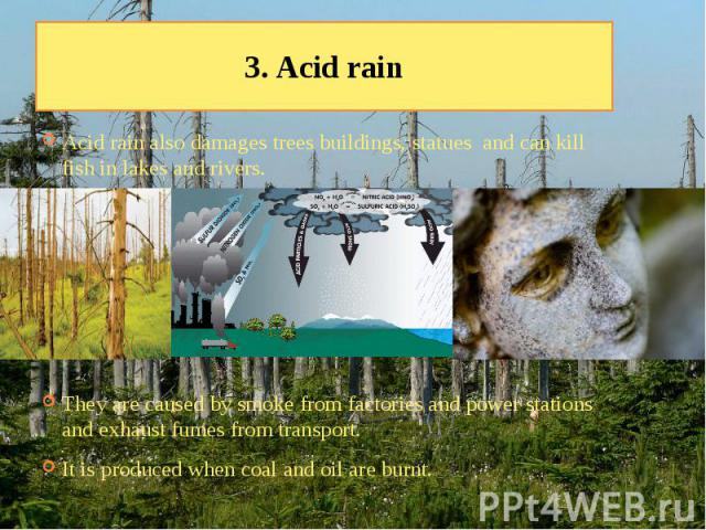 3. Acid rain Acid rain also damages trees buildings, statues and can kill fish in lakes and rivers. They are caused by smoke from factories and power stations and exhaust fumes from transport. It is produced when coal and oil are burnt.