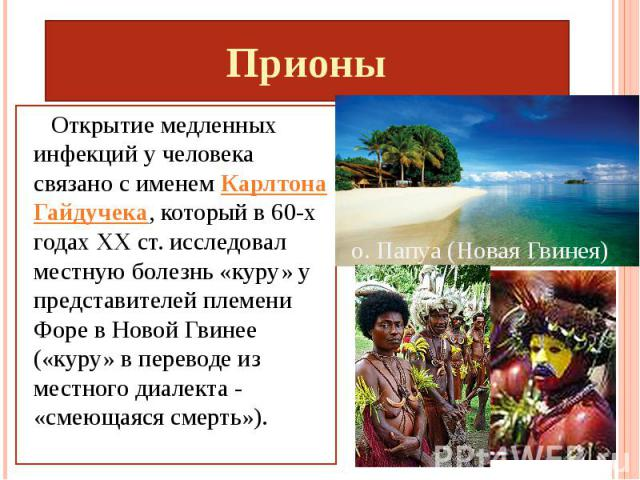 Прионы Открытие медленных инфекций у человека связано с именем Карлтона Гайдучека, который в 60-х годах XX ст. исследовал местную болезнь «куру» у представителей племени Форе в Новой Гвинее («куру» в переводе из местного диалекта - «смеющаяся смерть»).