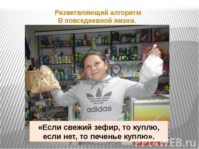«Если свежий зефир, то куплю,если нет, то печенье куплю».