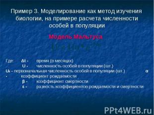 Модель Мальтуса Модель Мальтуса