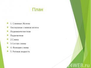 План 1. Слюнные Железы Околоушная слюнная железа Поднижнечелюстная Подъязычная 2