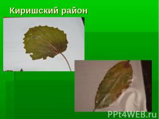 Киришский район