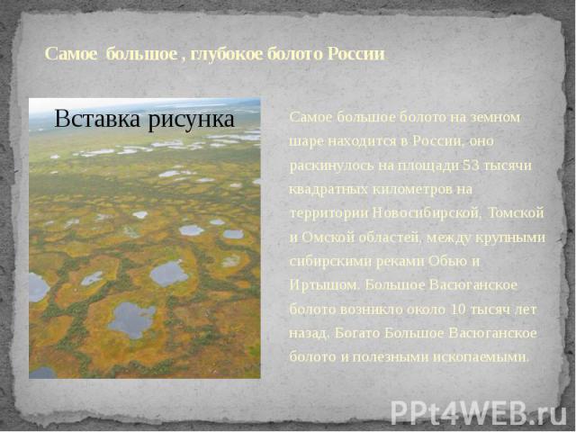 Самое большое , глубокое болото России Самое большое болото на земном шаре находится в России, оно раскинулось на площади 53 тысячи квадратных километров на территории Новосибирской, Томской и Омской областей, между крупными сибирскими реками Обью и…
