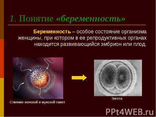 1. Понятие «беременность» Беременность – особое состояние организма женщины, при котором в ее репродуктивных органах находится развивающийся эмбрион или плод.