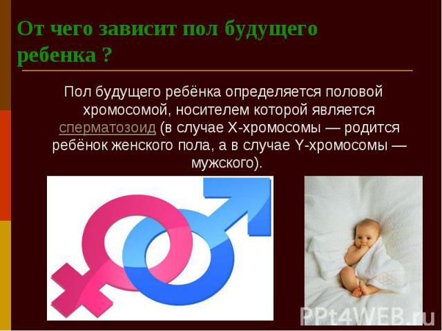 От чего зависит пол будущего ребенка ? Пол будущего ребёнка определяется половой хромосомой, носителем которой является сперматозоид (в случае X-хромосомы — родится ребёнок женского пола, а в случае Y-хромосомы — мужского).