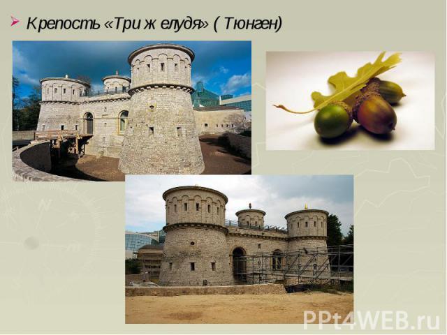 Крепость «Три желудя» ( Тюнген) Крепость «Три желудя» ( Тюнген)