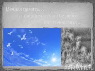 Вечная память… …павшим за чистое небо над головами….