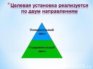 Целевая установка реализуется по двум направлениям