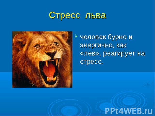 человек бурно и энергично, как «лев», реагирует на стресс. человек бурно и энергично, как «лев», реагирует на стресс.
