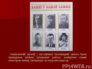 Намаганнямі вучняў і настаўнікаў Шылавіцкай школы была праведзена вялікая пошука