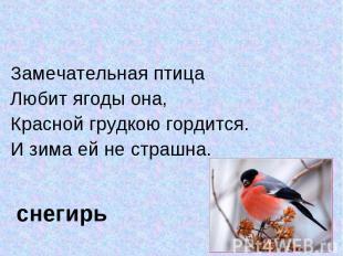 Замечательная птица Замечательная птица Любит ягоды она,Красной грудкою гордится