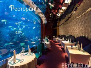 Ресторан!