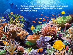 За такую твердость духа Австралия вознаграждает сторицей: ажурными архипелагами
