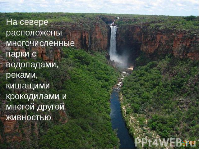 На севере расположены многочисленные парки с водопадами, реками, кишащими крокодилами и многой другой живностью