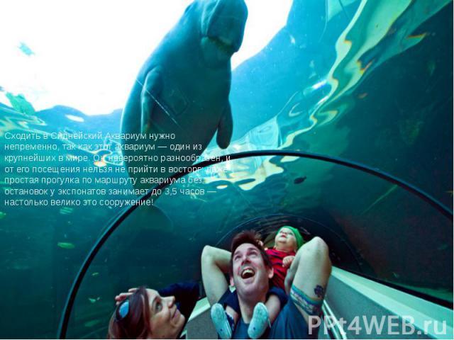 Сходить в Сиднейский Аквариум нужно непременно, так как этот аквариум — один из крупнейших в мире. Он невероятно разнообразен, и от его посещения нельзя не прийти в восторг: даже простая прогулка по маршруту аквариума без остановок у экспонатов зани…