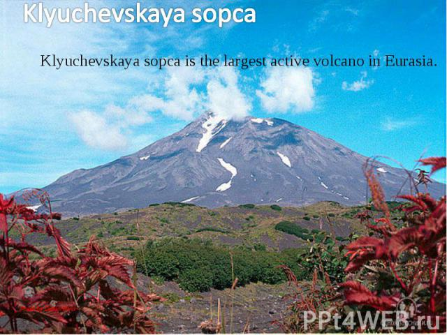 Klyuchevskaya sopca is the largest active volcano in Eurasia. Klyuchevskaya sopca is the largest active volcano in Eurasia.