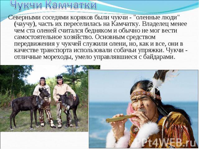 """Северными соседями коряков были чукчи - """"оленные люди"""" (чаучу), часть их переселилась на Камчатку. Владелец менее чем ста оленей считался бедняком и обычно не мог вести самостоятельное хозяйство. Основным средством передвижения у чукчей сл…"""