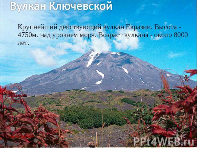 Крупнейший действующий вулкан Евразии. Высота - 4750м. над уровнем моря. Возраст вулкана - около 8000 лет. Крупнейший действующий вулкан Евразии. Высота - 4750м. над уровнем моря. Возраст вулкана - около 8000 лет.