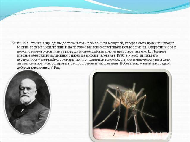 Конец 19 в. отмечен еще одним достижением – победой над малярией, которая была причиной упадка многих древних цивилизаций и на протяжении веков опустошала целые регионы. Открытие хинина помогло немного смягчить ее разрушительное действие, но не пред…