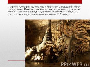 Пещеры Аггтелека выстроены в лабиринт. Здесь очень легко заблудиться. Известно м