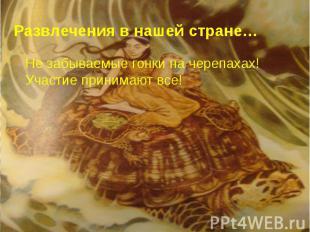 Развлечения в нашей стране… Не забываемые гонки на черепахах! Участие принимают