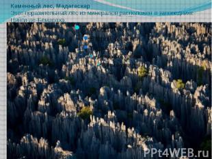 Каменный лес, Мадагаскар Этот поразительный лес из минералов расположен в запове