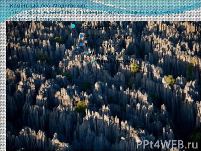 Каменный лес, Мадагаскар Этот поразительный лес из минералов расположен в заповеднике Цинги-де-Бемараха.