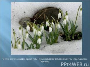 Весна-это особенное время года .Пробуждённая теплом и светом ,просыпается природ