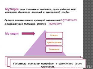Мутации- это изменения генотипа, происходящие под влиянием факторов внешней и вн