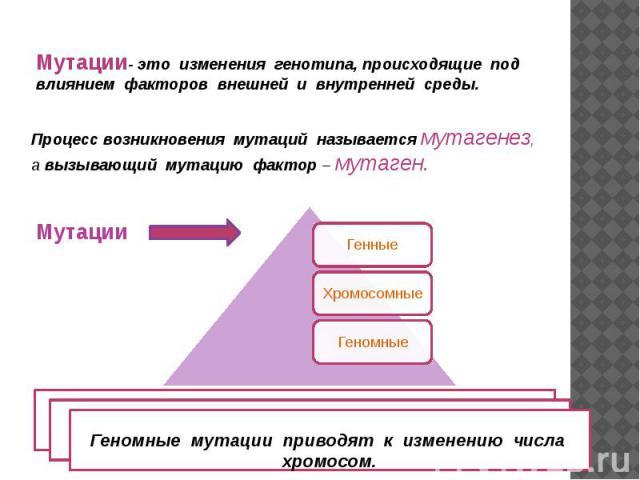 Мутации- это изменения генотипа, происходящие под влиянием факторов внешней и внутренней среды.