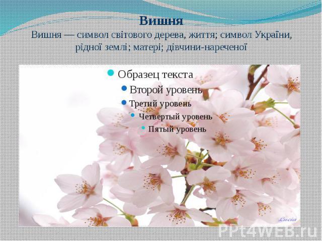 Вишня Вишня— символ світового дерева, життя; символ України, рідної землі; матері; дівчини-нареченої