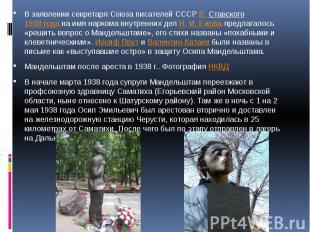 В заявлении секретаря Союза писателей СССРВ. Ставского1938 годана имя наркома