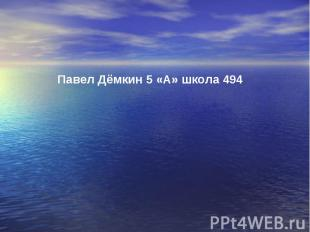 Павел Дёмкин 5 «А» школа 494