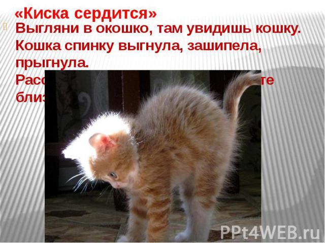 «Киска сердится»Выгляни в окошко, там увидишь кошку.Кошка спинку выгнула, зашипела, прыгнула.Рассердилась киска – на подходите близко!