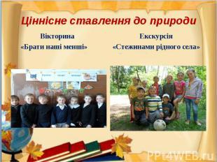 Вікторина Вікторина «Брати наші менші»
