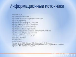 http://pict.by.ru http://pict.by.ru http://school-collection.edu.ru http://www.z